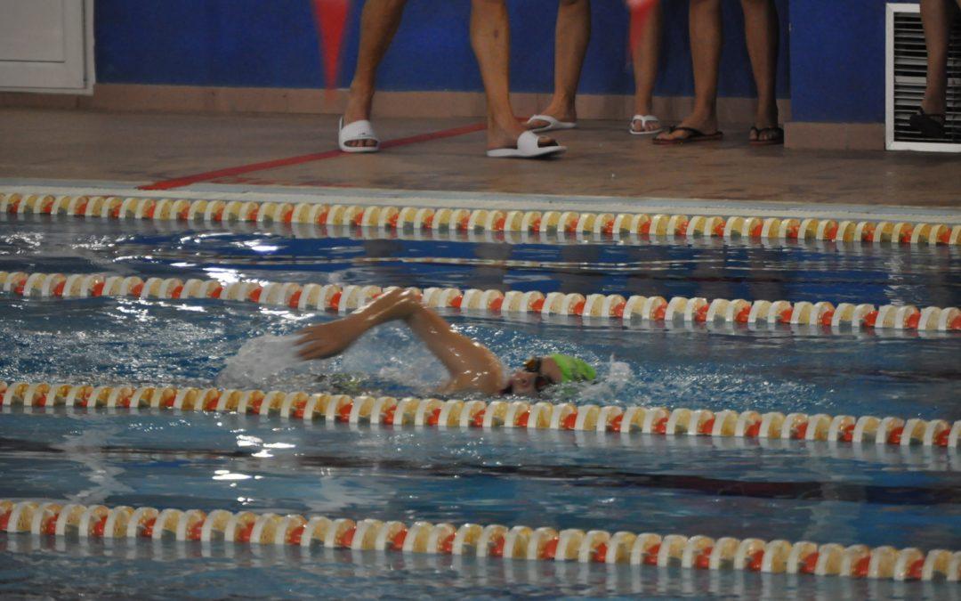 Campeonato natación «somos deporte»